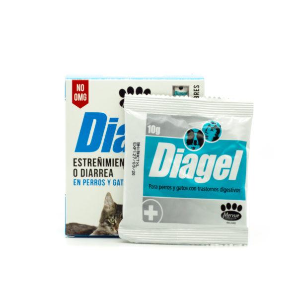 Diagel-2